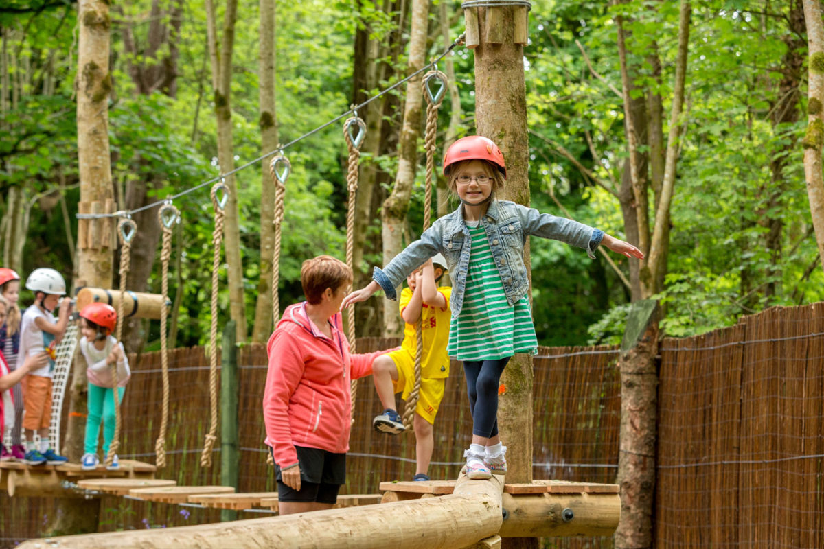 Junior Woodland Adventure Course 2