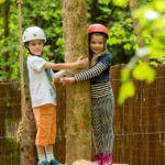 Junior Woodland Adventure Course 3
