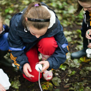 Schools Groups Castlecomer Discovery Park