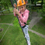 Tree-Top Adventure Walk & Climbing Wall
