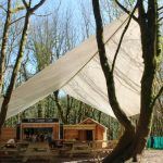 Canopy Cafe 2